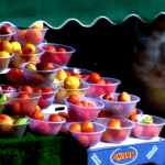 Video: A day in the life of the Fruit Bowl