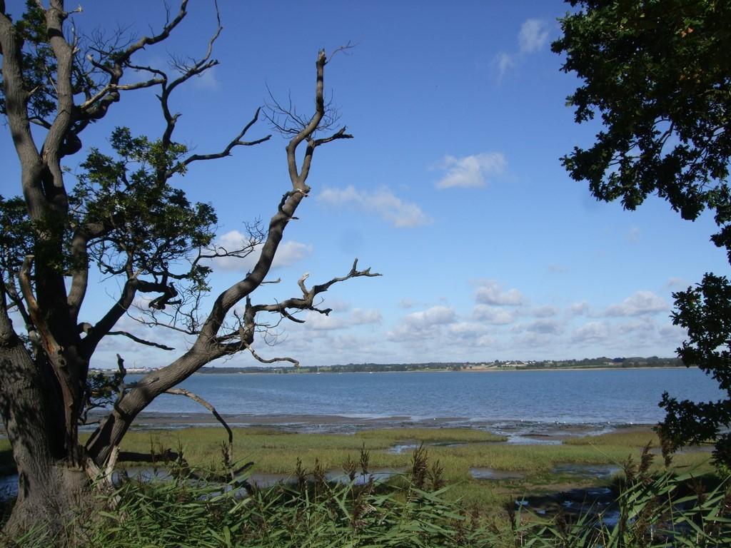 North Essex Coast