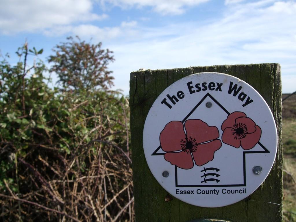 The Essex Way All photos: Stephen Emms / LBTM